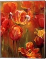 Tulips in the Midst II Fine-Art Print