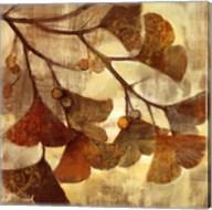 Ginkgo Fine-Art Print