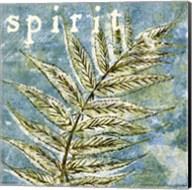 Spring Renewal IV Fine-Art Print