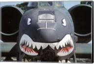 Flying Tigers II Fine-Art Print