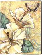 Small Hibiscus Medley II Fine-Art Print