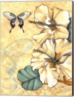 Small Hibiscus Medley I Fine-Art Print