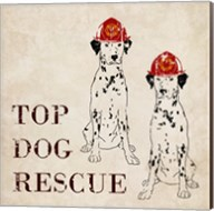 Top Dog Rescue Fine-Art Print