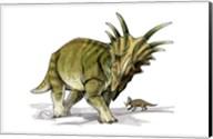 Styracosaurus Fine-Art Print