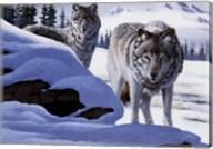 Wolves On The Prowl Fine-Art Print