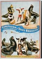 Forepaugh & Sells Brothers Fine-Art Print