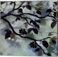Moonlight Patterns Fine-Art Print