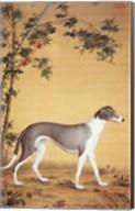 Greyhound by Bamboo Fine-Art Print
