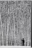 Man and Bamboo Fine-Art Print