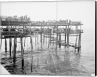 Hauling the Nets, Young's Pier, Atlantic City, NJ Fine-Art Print