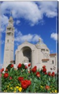 Basilica of the National Shrine of the Immaculate Conception, Washington D.C., USA Fine-Art Print