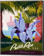 Discover Puerto Rico Fine-Art Print