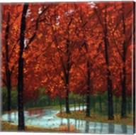 Autumn Stream Fine-Art Print