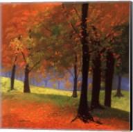 Autumn Trees Fine-Art Print