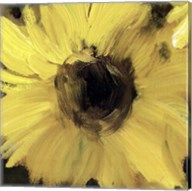 Sunflower Square I Fine-Art Print