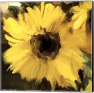 Sunflowers Square I Fine-Art Print