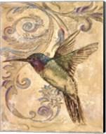 Hummingbrid II Fine-Art Print