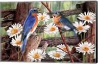 Serenade in Blue Fine-Art Print
