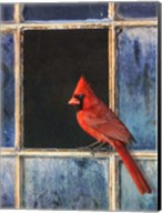 Cardinal Window Fine-Art Print