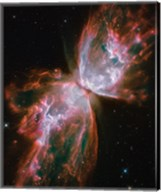 Planetary Nebula Fine-Art Print