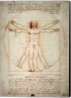 Vitruvian Man Fine-Art Print