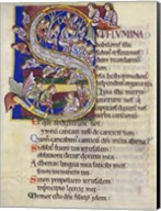 Psalm 136,  Initial S In Albani Psalter Fine-Art Print