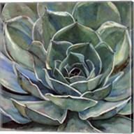 Agave Flower Fine-Art Print
