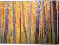 Forest Verticals Fine-Art Print