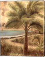 Island Palm II Fine-Art Print