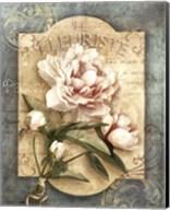 La Fleuriste Fine-Art Print