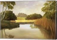 Reeds, Birches & Water I Fine-Art Print