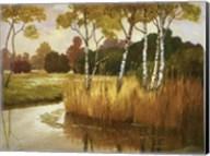 Reeds, Birches & Water II Fine-Art Print