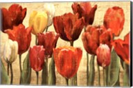 Tulip Fantasy on Cream Fine-Art Print