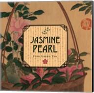 Jasmine Pearl Fine-Art Print