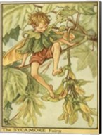 The Sycamore Fairy Fine-Art Print