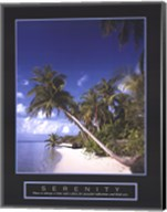 Serenity - Palm Trees Fine-Art Print