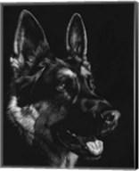 Canine Scratchboard I Fine-Art Print
