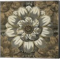 Rosette Detail IV Fine-Art Print