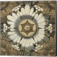 Rosette Detail V Fine-Art Print