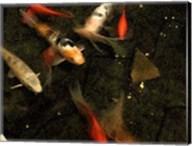 Goldfish Pond II Fine-Art Print