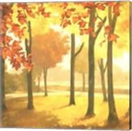 Golden October II Fine-Art Print