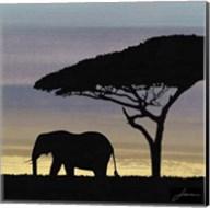 Savanna I Fine-Art Print