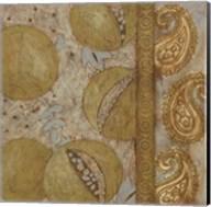 Gilded Sari IV Fine-Art Print