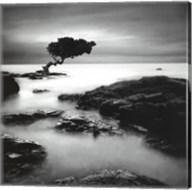 Tree Of Temptation - Mini Fine-Art Print