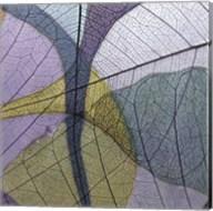 Purple and Grey Leaves I Fine-Art Print