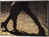 Tango in controluce Fine-Art Print