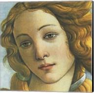 The Birth of Venus (detail) Fine-Art Print