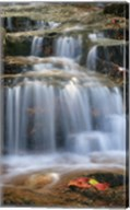 Waterfall Whitecap Stream Fine-Art Print