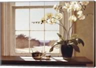 Orchids with Teapots Fine-Art Print