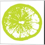 Lime Orange Slice Fine-Art Print